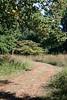 Tyler Arboretum1502