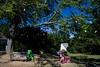 Tyler Arboretum1427