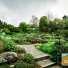 UC Berkeley Botanical Garden_013