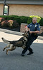 Montgomery Township police K9 Officer Rose and his dog, Duke, give a demonstration at the UD Jr. Police Academy