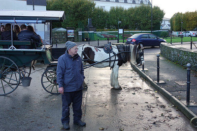 Jaunting Car Ride_Kilarney_Ireland_GJP01775