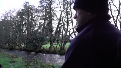 Jaunting Car Ride_Kilarney_Ireland_MAH01781
