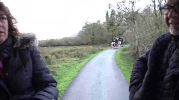 Jaunting Car Ride_Kilarney_Ireland_MAH01797