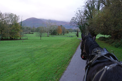 Jaunting Car Ride_Kilarney_Ireland_GJP01777