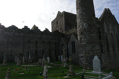 Rock of Cashel_Cashel_Ireland_GJP02125