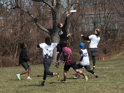 UMBC vs. TSU B-teams Ultimate Frisbee Scrimmage on 2018-03-11