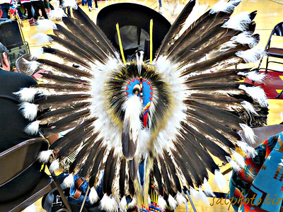 //www.indians.org/articles/feathers.html  Feathers mean a lot to Native American Tribes.  A feather isn't just something that falls out of a bird, it means much more.  The feather symbolizes trust, honor, strength, wisdom, power, freedom and many more things. To be given one of these is to be hand picked out of the rest of the men in the tribe - it's like getting a gift from a high official.  If any Indian is given Golden or Bald Eagle feathers it is one of the most rewarding items they can ever be handed. The Indians believe that eagles have a special connection with the heavens since they fly so close. Many Indians believe that if they are given this feather, it is a symbol from above. They believe that the eagle is the leader of all birds, because it flies as high as it does and sees better than all the birds. ...  http://life.goodnewseverybody.com/eternity.html  Circle of Tribes https://www.facebook.com/groups/535034003207122/