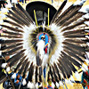 "<a href=""http://www.indians.org/articles/feathers.html"">http://www.indians.org/articles/feathers.html</a><br /> <br /> Feathers mean a lot to Native American Tribes.  A feather isn't just something that falls out of a bird, it means much more.  The feather symbolizes trust, honor, strength, wisdom, power, freedom and many more things. To be given one of these is to be hand picked out of the rest of the men in the tribe - it's like getting a gift from a high official.<br /> <br /> If any Indian is given Golden or Bald Eagle feathers it is one of the most rewarding items they can ever be handed. The Indians believe that eagles have a special connection with the heavens since they fly so close. Many Indians believe that if they are given this feather, it is a symbol from above. They believe that the eagle is the leader of all birds, because it flies as high as it does and sees better than all the birds. ...<br /> <br /> <a href=""http://life.goodnewseverybody.com/eternity.html"">http://life.goodnewseverybody.com/eternity.html</a><br /> <br /> Circle of Tribes<br /> <a href=""https://www.facebook.com/groups/535034003207122/"">https://www.facebook.com/groups/535034003207122/</a>"