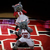 Jan 6, 2010; Raleigh, NC, USA; North Carolina State Wolfpack mascots prior to the game against the Holy Cross Crusaders at the RBC Center.  The Wolfpack defeated the Crusaders 87-70.  Mandatory Credit: Brian Utesch-US PRESSWIRE