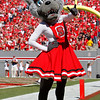 Oct 9, 2010; Raleigh, NC, USA; The North Carolina State Wolfpack mascot celebrates a touchdown during the second half against the Boston College Eagles at Carter-Finley Stadium.  The Wolfpack defeated the Eagles 44-17.  Mandatory Credit: Brian Utesch-US PRESSWIRE