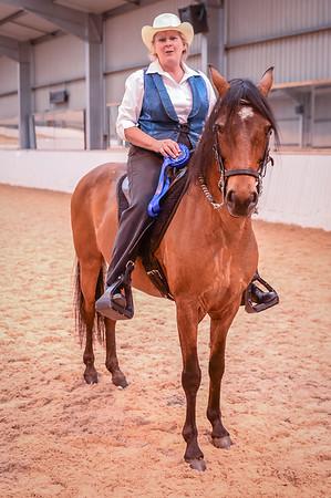 Class 26 (Paso Fine Amateur Rider Pleasure)
