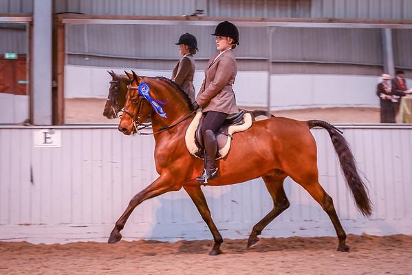 Class 28 ( Ridden FB Amateur Rider)