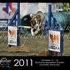 Cynosport 2011 - Horizontal Photo Template for Karen Moureaux @ dogsportphotos.com