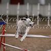 20111015bar-2188-150