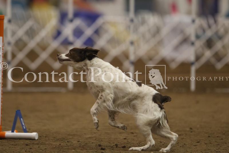 2012Mar30_T2B_16_4505