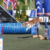 Cyno_2012_Sunday-3493
