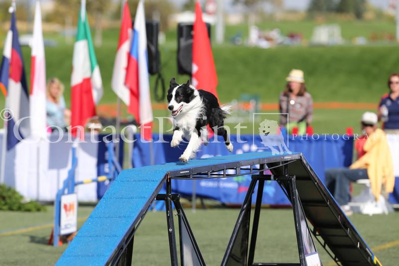 Cyno_2012_Sunday-3537