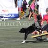 Cyno_2012_Sunday-3441