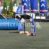 Cyno_2012_Sunday-3457
