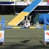 Cyno_2012_Sunday-3658