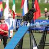 Cyno_2012_Sunday-3453