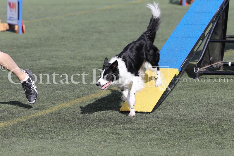 Cyno_2012_Sunday-3647