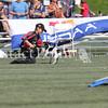 Cyno_2012_Sunday-2035