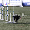 Cyno_2012_Thurs-0880