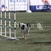 Cyno_2012_Thurs-0868