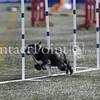Cyno_2012_Thurs-0905