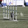 Cyno_2012_Thurs-0890