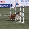 Cyno_2012_Thurs-1601