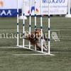 Cyno_2012_Thurs-1603