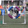 Cyno_2012_Thurs-4563