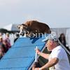Cyno_2012_Sunday-1561