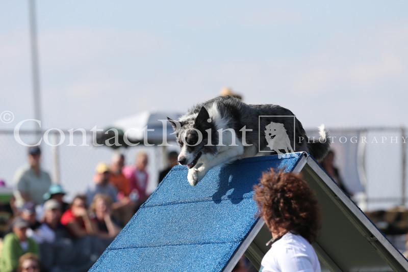 Cyno_2012_Sunday-1689