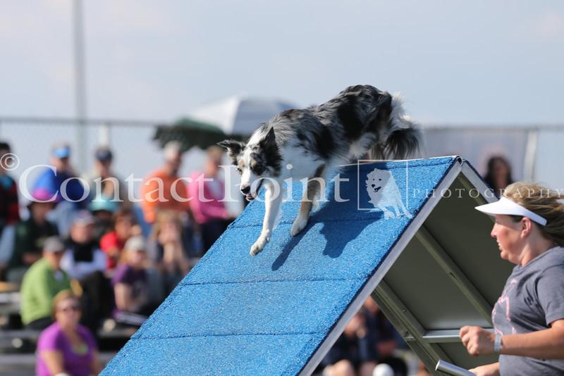 Cyno_2012_Sunday-1513