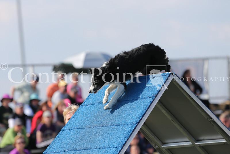 Cyno_2012_Sunday-1600