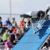 Cyno_2012_Sunday-1514