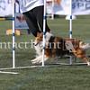 Cyno_2012_Sunday-1696