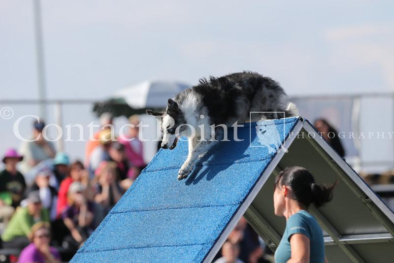 Cyno_2012_Sunday-1630