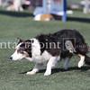Cyno_2012_Sunday-1528