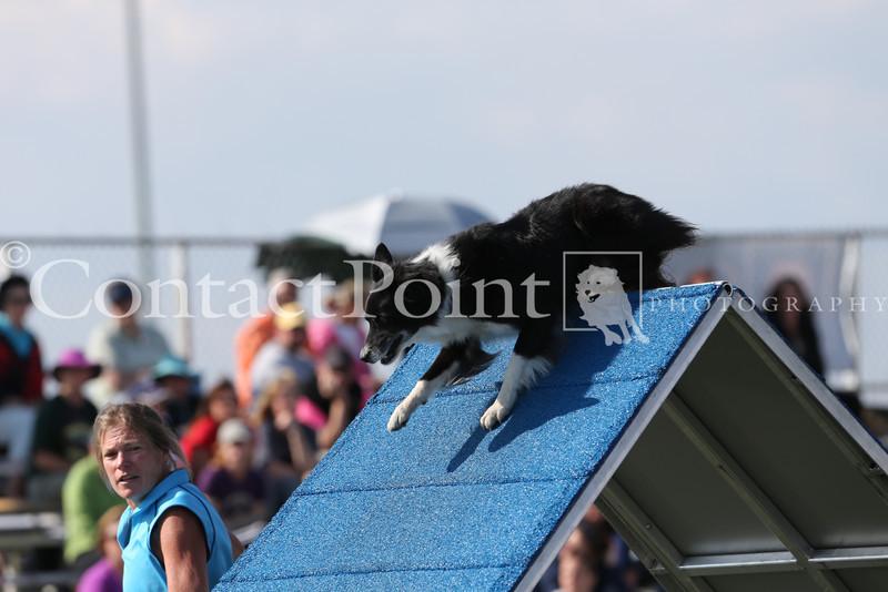 Cyno_2012_Sunday-1594