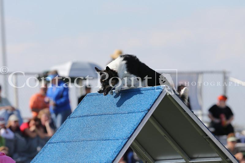 Cyno_2012_Sunday-1702