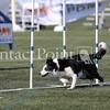 Cyno_2012_Sunday-1660