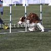 Cyno_2012_Sunday-1546