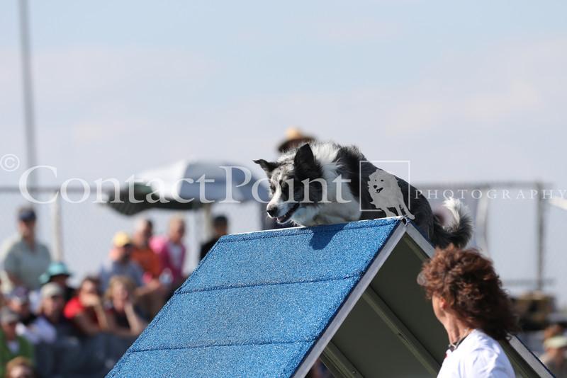Cyno_2012_Sunday-1688