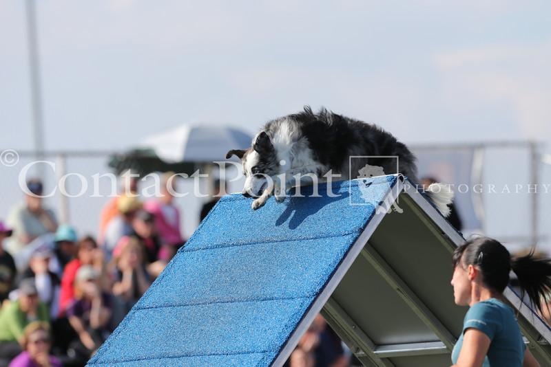 Cyno_2012_Sunday-1629