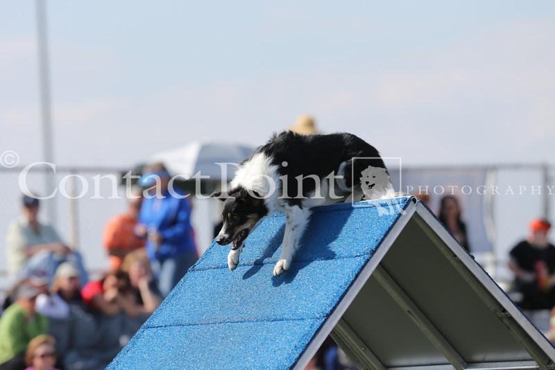 Cyno_2012_Sunday-1703