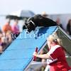 Cyno_2012_Sunday-1490